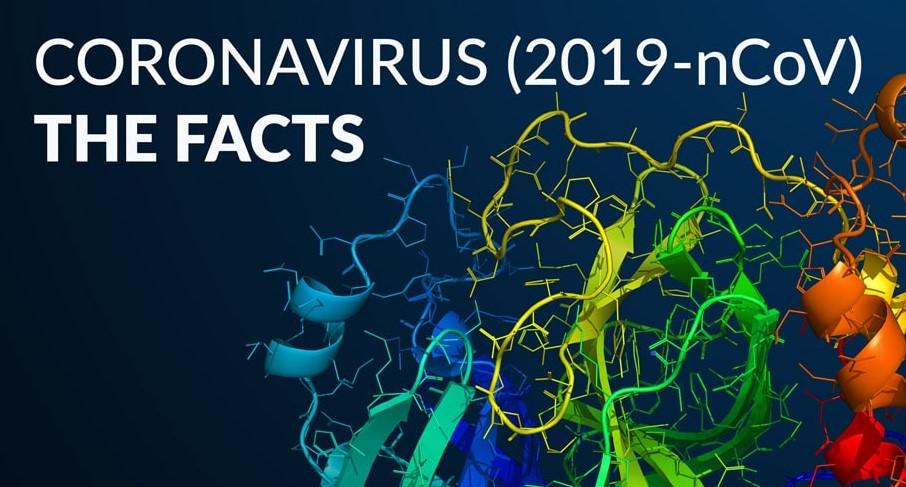 coronavirus ncov 2019 symptoms
